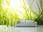 Fototapeten Gras – attraktive Option für Leuten, die gut ihre Wohnung ausstatten wollen